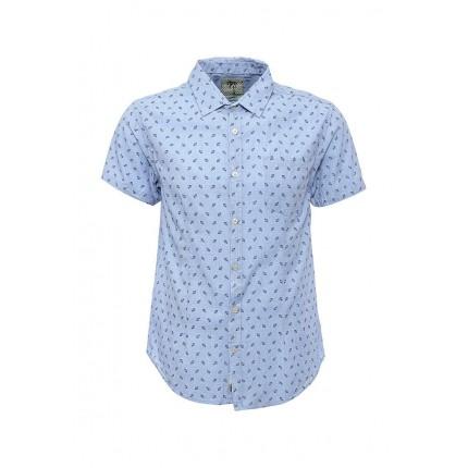 Рубашка Forex модель FO011EMJAC24