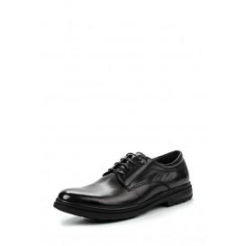 Туфли Dino Ricci модель DI004AMLCN36 распродажа